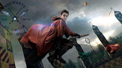 harrypotter quidditch sports flying gryffindor freetoedit