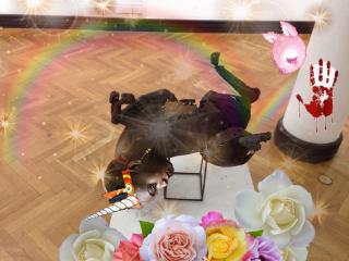 unicorn rainbow rainbowlight