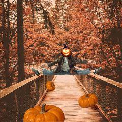 freetoedit remixit man pumpkin bridge ftestickers