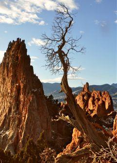 freetoedit nature rockformations singletree warmcoloreffect