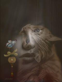 freetoedit womanportrait cat doubleexposure overlay