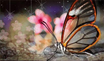 freetoedit butterfly glass wing flower