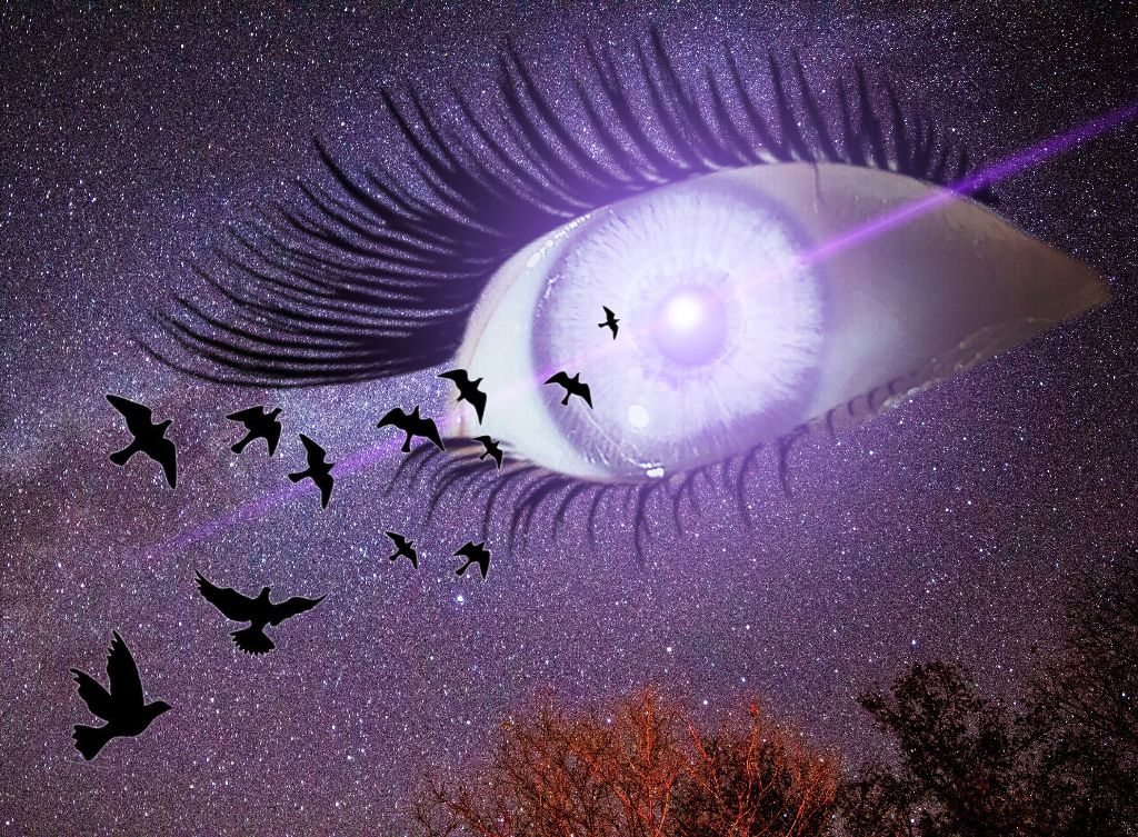 #freetoedit #eye #surreal #birds #lensflare