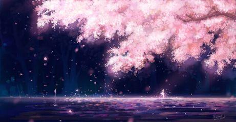 shigatsuwakiminouso yourlieinapril anime animegirl animecutegirl