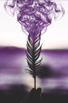 smoke feather purple freetoedit