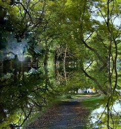 madewithpicsart editstepbystep mirroreffect doubleexposure landscape