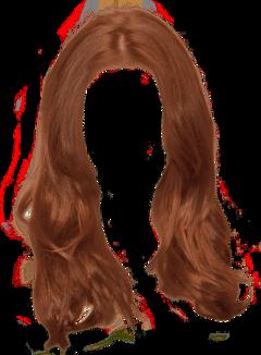 hair longhair brown freetoedit