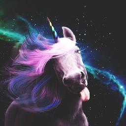 unicornselfie