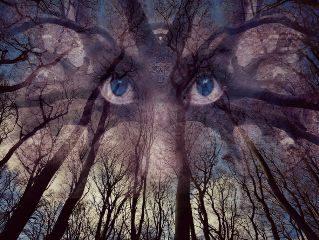 freetoedit dobleexpesure threes forest eyes