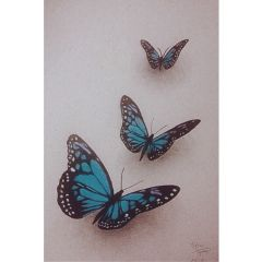 butterfly nature blue realism realistic