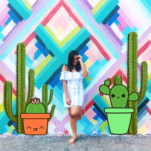 #freetoedit Cacti are our friends!  #fun #bright #cactus #myedit #people #photography #art #interesting #green #sticker #lol #cute #plant