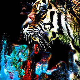 freetoedit tigerface tigerart myeditions colours