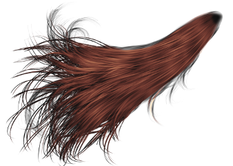 hair wig brown long freetoedit