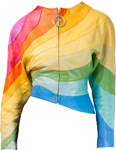 dress clothes jacket leather shirt freetoedit