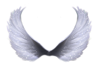 wings angel feathers sparkles glitter freetoedit
