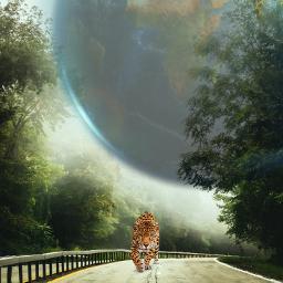 freetoedit cat earth street