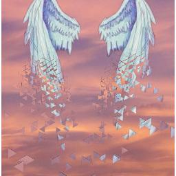 freetoedit free sky wings
