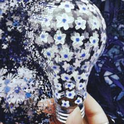 freetoedit daisy purple paint bulb