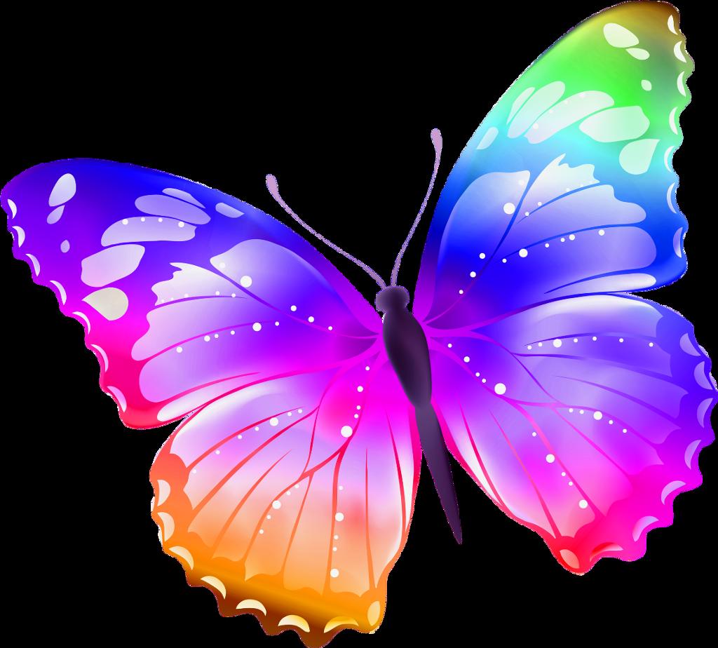 БабочкиВсе картинки для раскраски можно распечатать