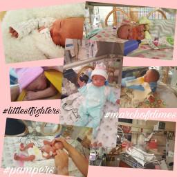 littlestfighters pampers prematurityawareness nicu nicufighters