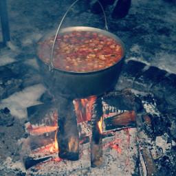 dpcfeast feast