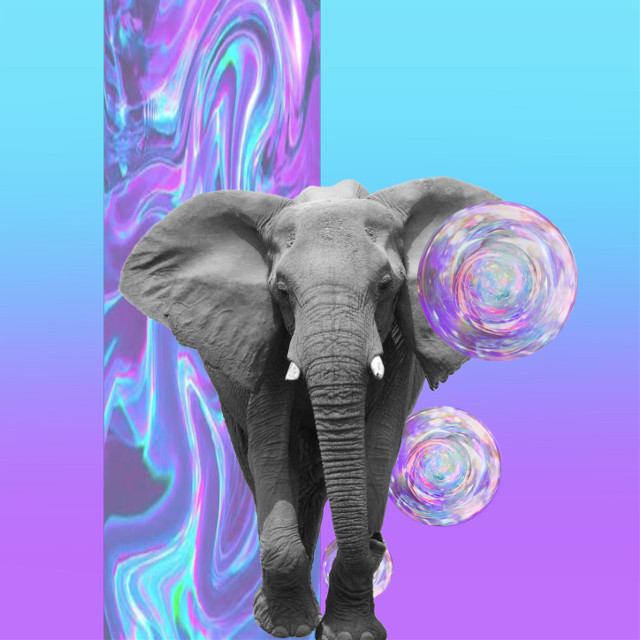 #freetoedit Got to love the 💿HOLO💿!!!! #holo #holographic #elephant #animals #madewithpicsart #orb #nature #remix #sticker #gradient #blue #purple #foil #interesting #art #abstract