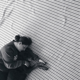 freetoedit petsandanimals blackandwhite stripes composition