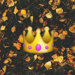 prinsess👑 queen september2017 freetoedit prinsess