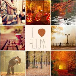 autumncollage freetoedit fall pumkin autumn
