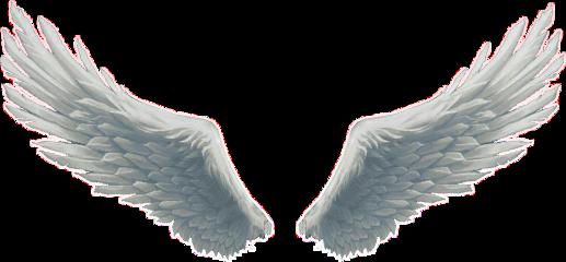 angels freetoedit