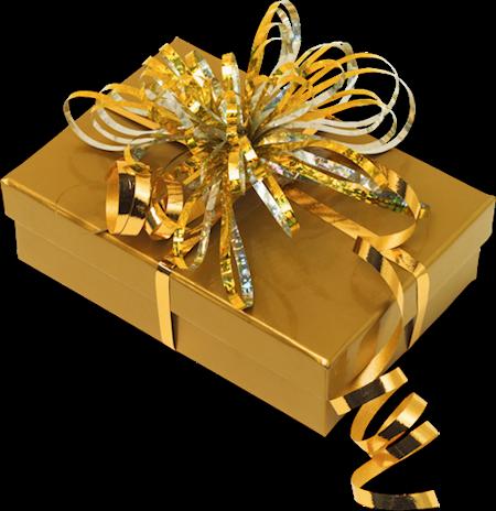 Christmas Present Geschenk Birthday Geburtstag Gift Gol