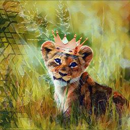 crown crownsticker lionking lioncub cub freetoedit
