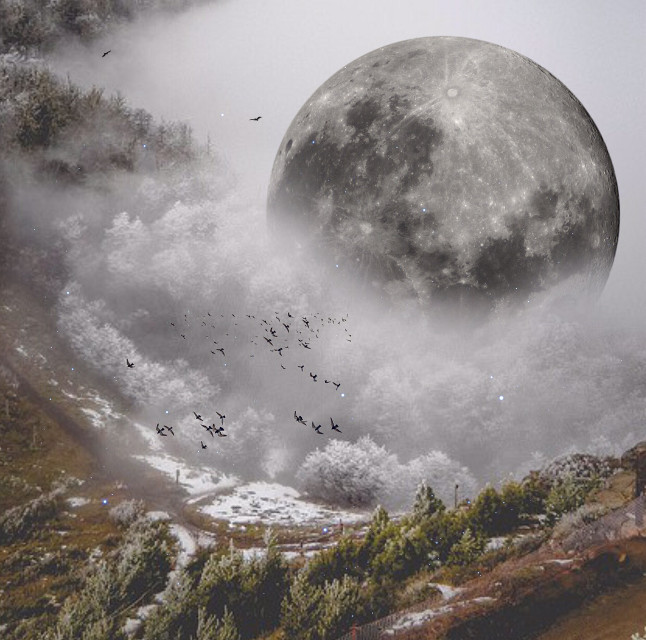 Over the moon  #myedit #surreal #moon #remixed from @pixelcco