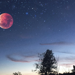 freetoedit moon supermoon orangemoon night