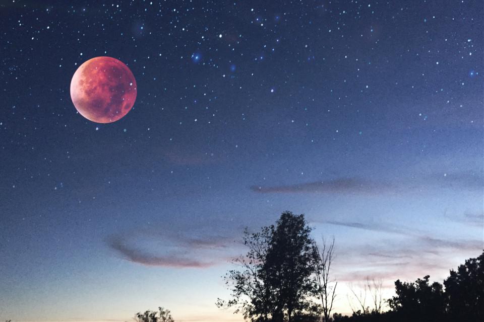 #freetoedit #moon #supermoon #orangemoon #night #sky #tree #clouds #stars #blue #sunset #photography #art #madewithpicsart #picsart