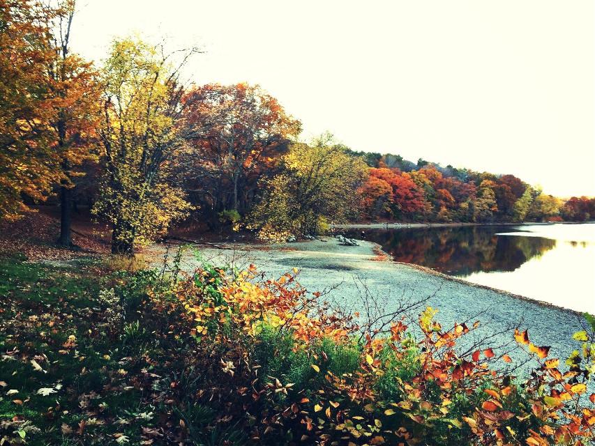 #pclandscape #landscape Good morning! #freetoedit