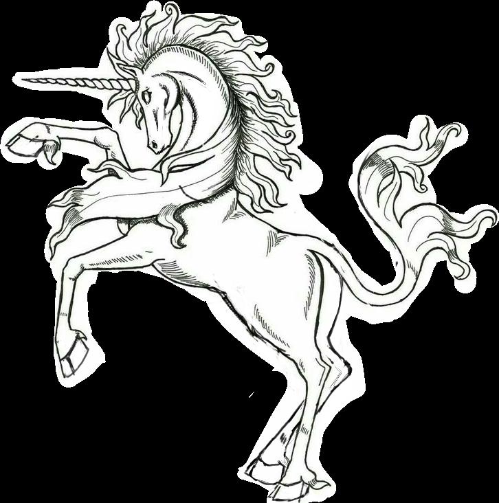 #unicorn #dibujo
