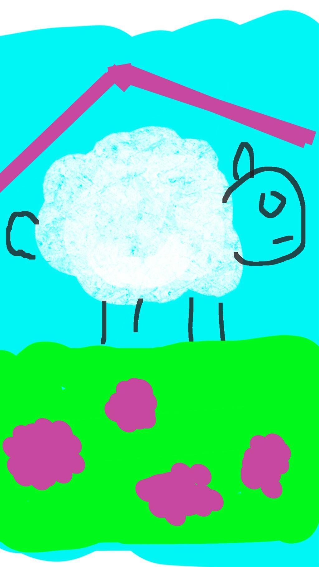 #sheep