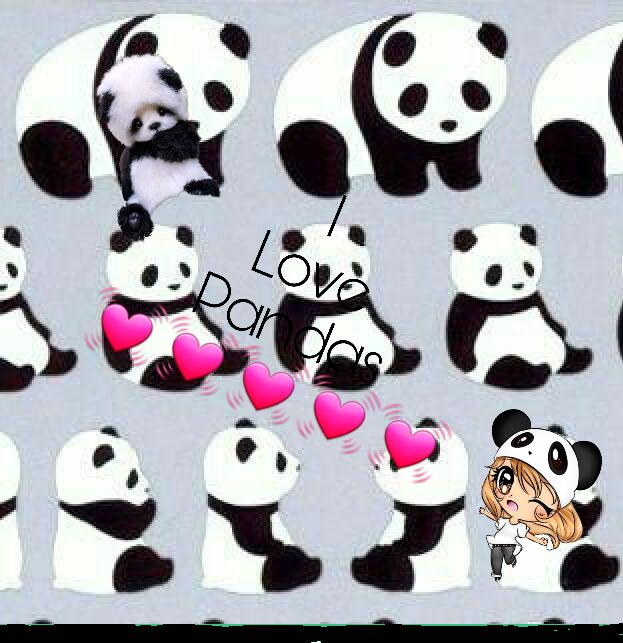 #PandaKawaii