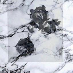 rose black marble art freetoedit