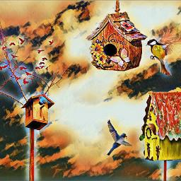 freetoedit birdhouseremix magic bird fullcolors
