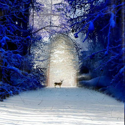 freetoedit snow nature surreal photography