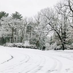 pcwinterparks winterparks freetoedit