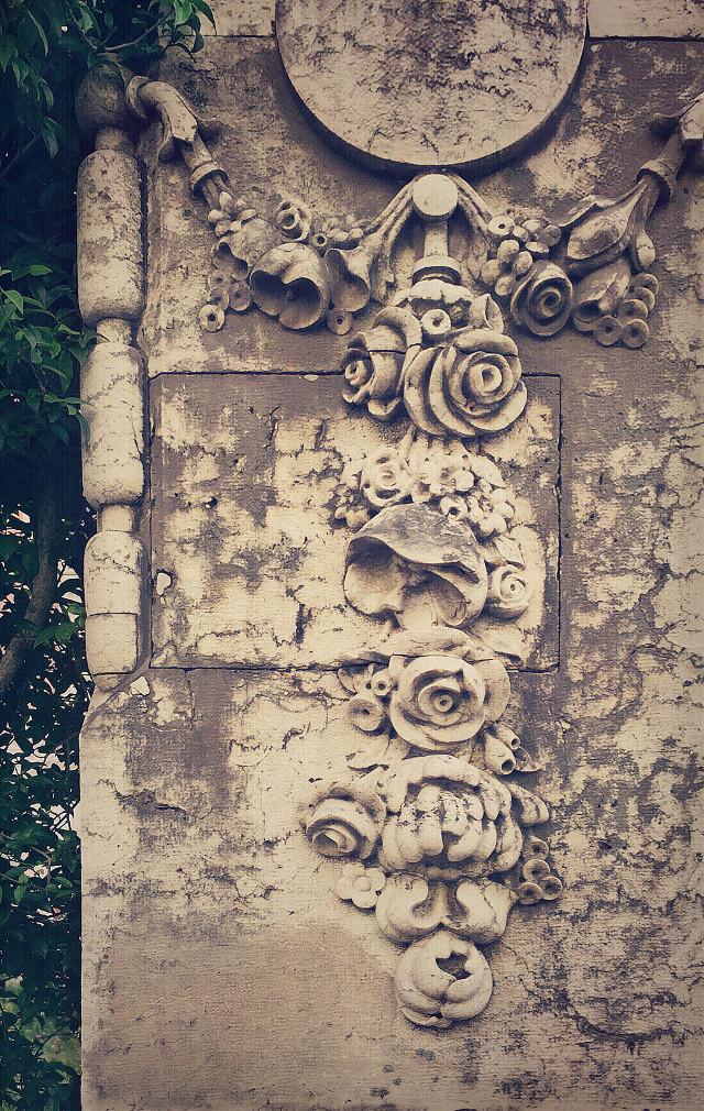 #veryoldhousewall #plants #urbannature #carvedstonewalldecoration #detail #olddesign #vintage #nostalgic #retro #timelessbeauty #urbanexploringphotography