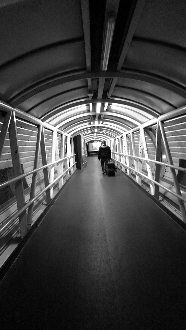 Wandering the world ...  • • • • •  #london #lifestyle #travelgram #traveltheworld #street #streetphotography #landscape_captures #unitedkingdom #uk #iphone7s #adventure #airport #citylife #travellife #wanderlust #wander #bnw #bnwphotography #europe #explore #freetoedit