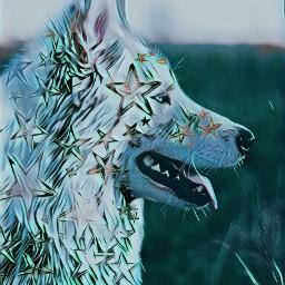 freetoedit stars dog stickeroftheday stickerofthedayremix
