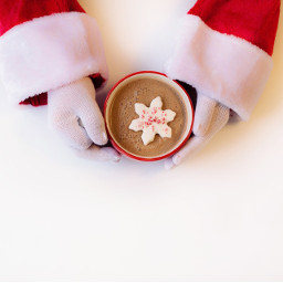 FreeToEdit Santa SantaClaus red white coffee drink mug cup cappuccino coffee yummy hands