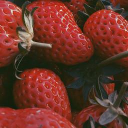 freetoedit strawberry photography