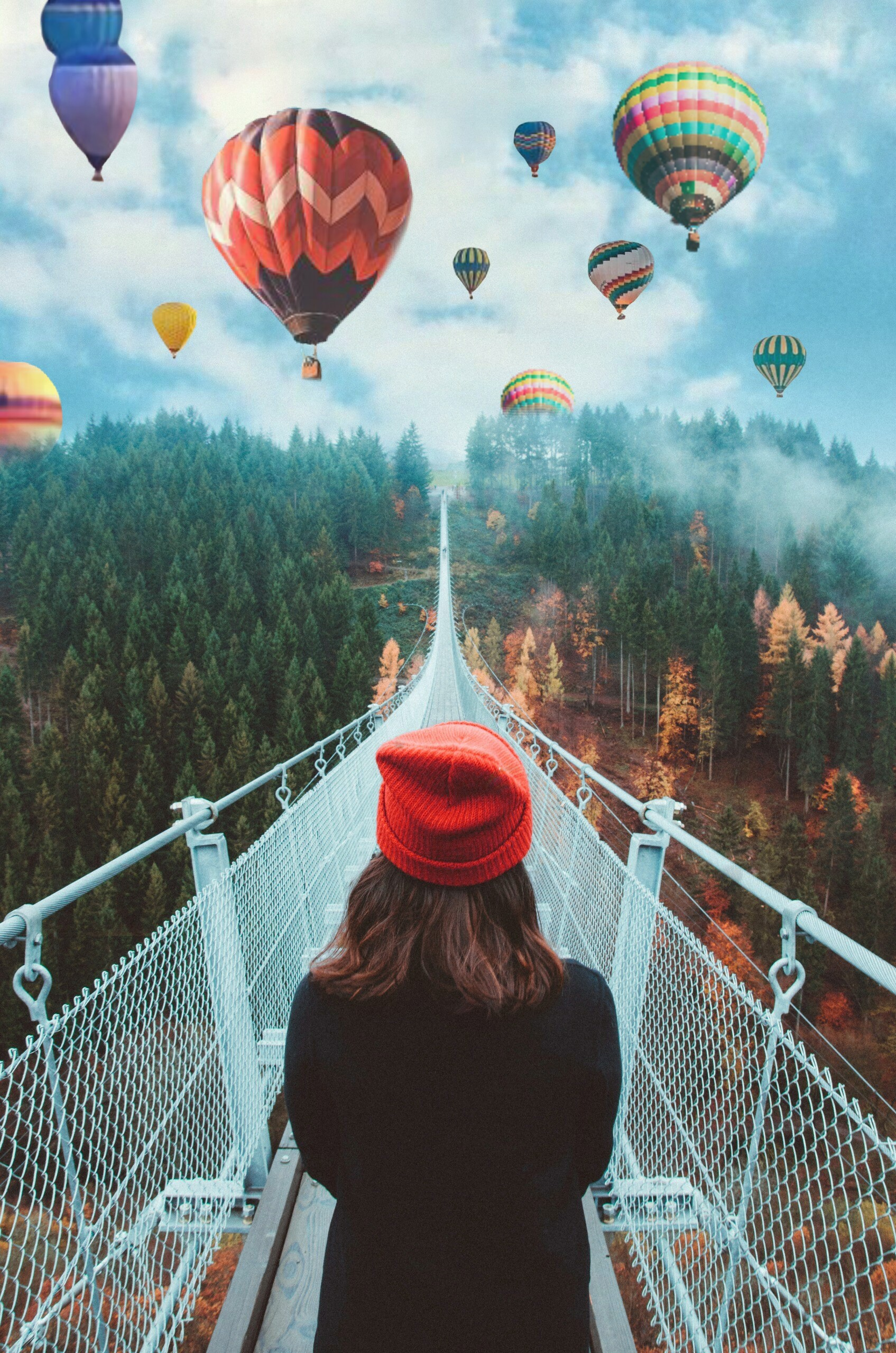 #hotairballoon #person #people #human #model #girl #interesting #sky #clouds #bridge #trees #hat #digitalart #art #photography #photography #edit #nature #