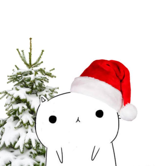 #gato #navidad #gato 😛
